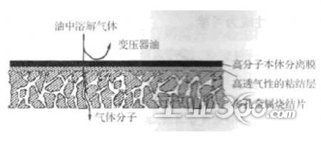 复合式油气分离膜结构示意图