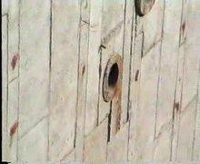 墙面粘贴SBS防水卷材工艺