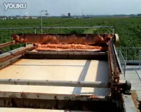 涡凹气浮机(印染污水)