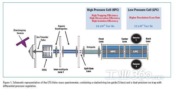 离子阱质谱仪与蛋白质组学;