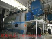 广州迪森股份公司携手大成锅炉定制的生物质锅炉